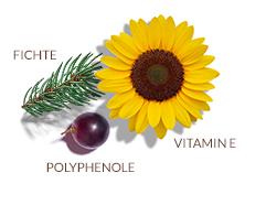 Patented antioxidant complex
